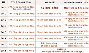Phuong-Thuc-Thanh-Toan-Du-An-Alibaba-An-Phuoc-Dat-Nen-Long-Thanh